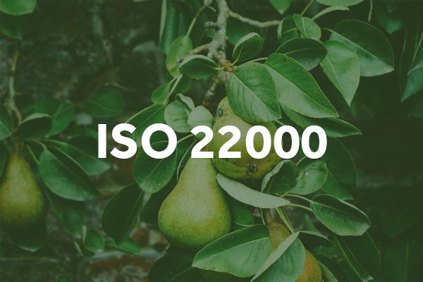 iso-22000-food-safety