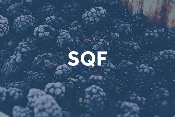 sqf (1)